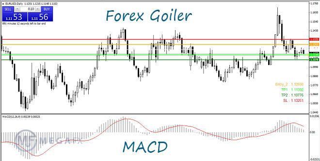 Индикатор форекс гойлер торговля валютой с плечом